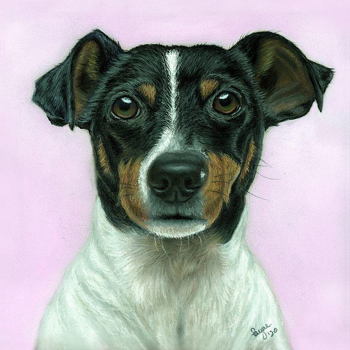 Dog pastel drawing - Teresa Payne Art
