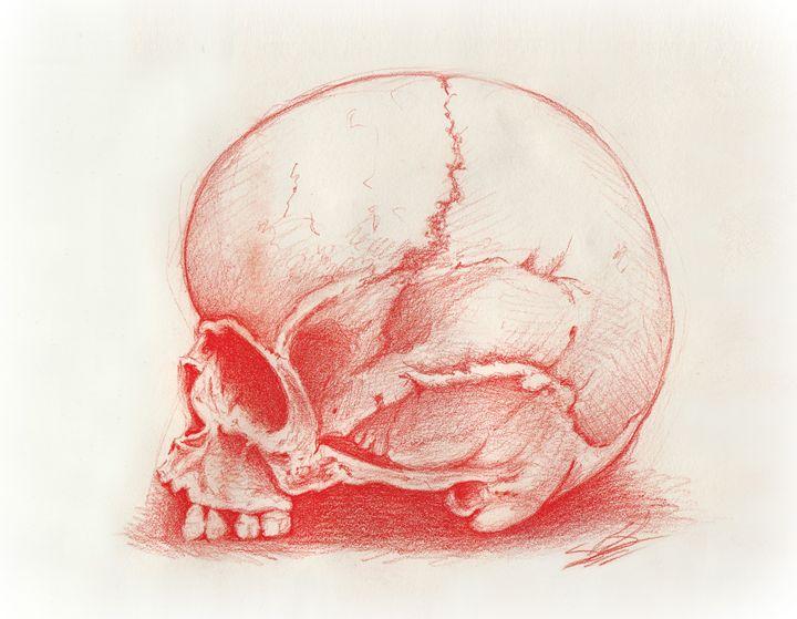 The Red Skull - ArtistsrsCreations