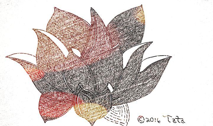 A Lotus Bouquet - Tata Kimfa
