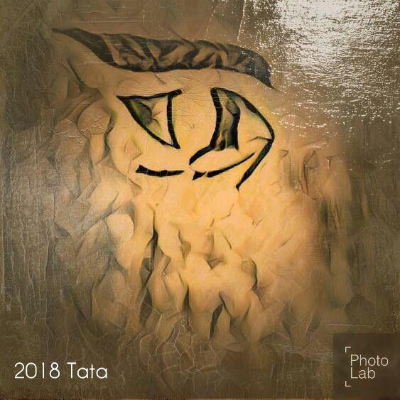 Opening - Tata Kimfa