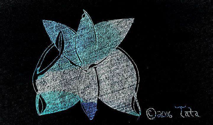 Moonlight Butterfly - Tata Kimfa