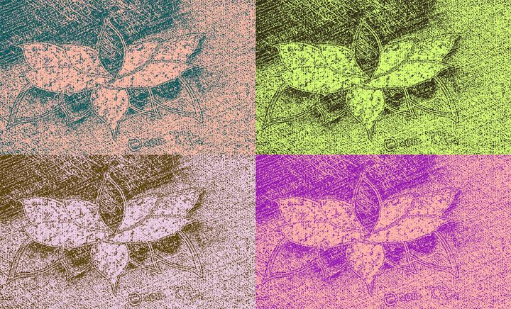 Spider Lotus Quad - Tata Kimfa