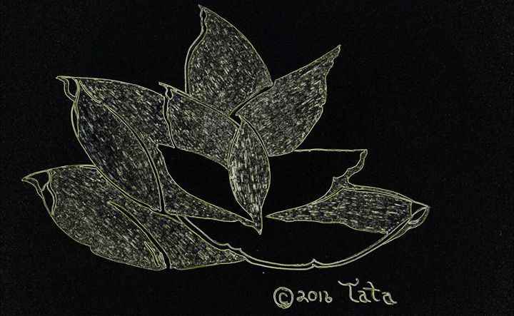 The Magic Mix Leaf - Tata Kimfa