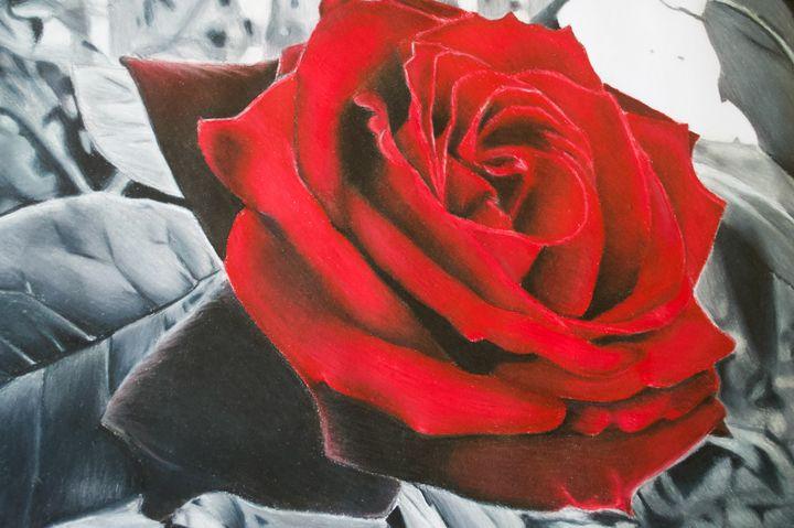 The Rose - EMC_ART