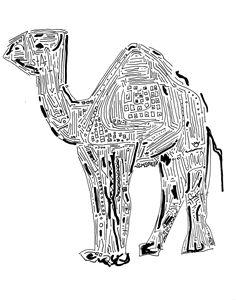 Amazin' Camel // Solvable Maze