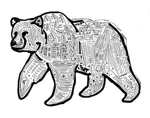 Amazin' Grizzly // Solvable Maze