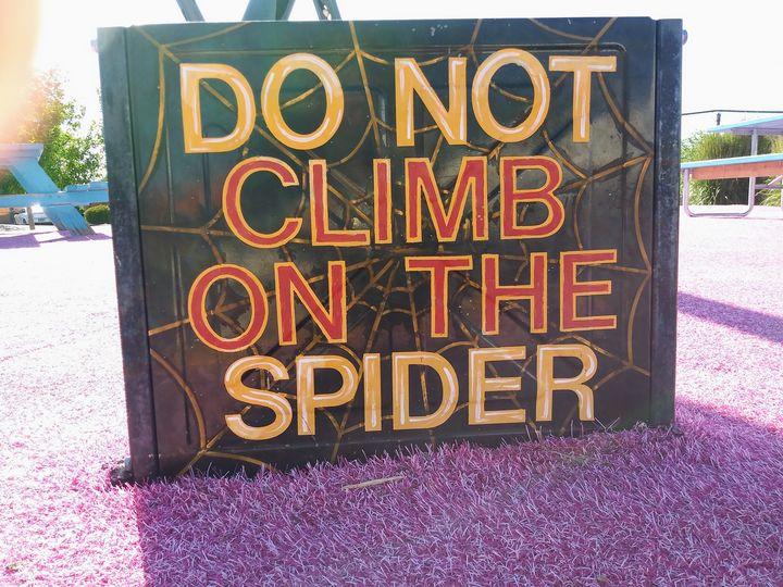 Spider, oh no - Meagen