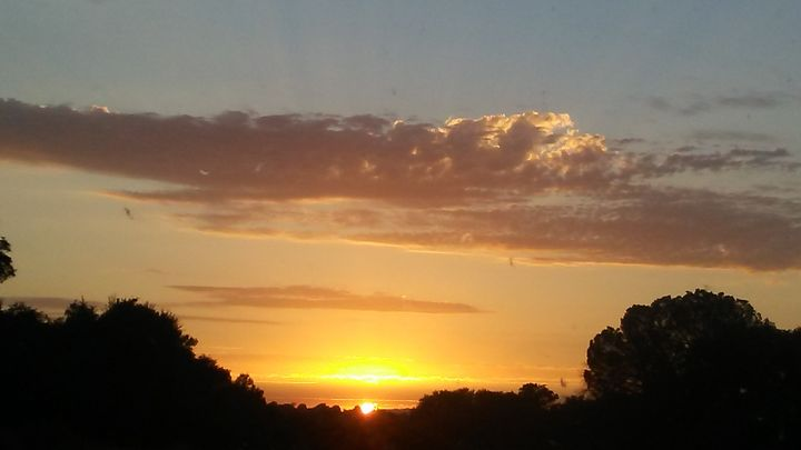 Sunset - Lonely artist