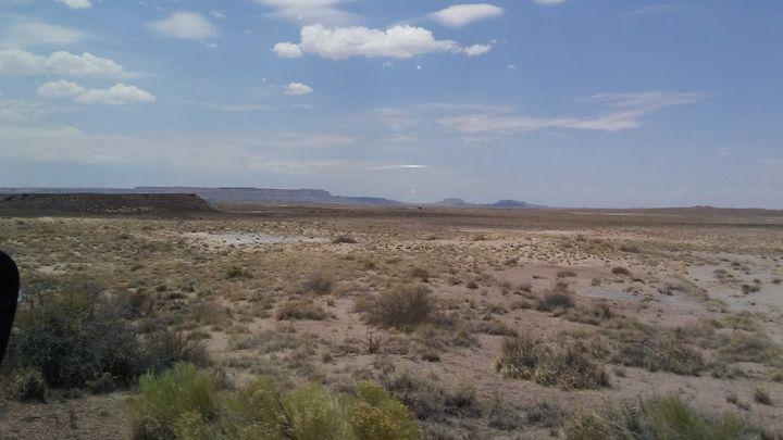 Desert - Lonely artist