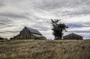 North Coast Barn