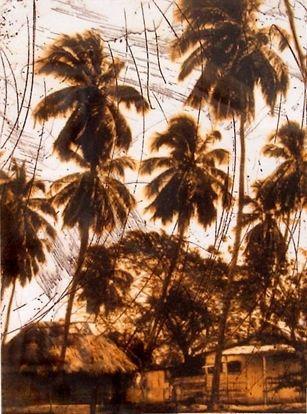3 palms - Andrew Downey