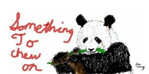 Panda something to chew on