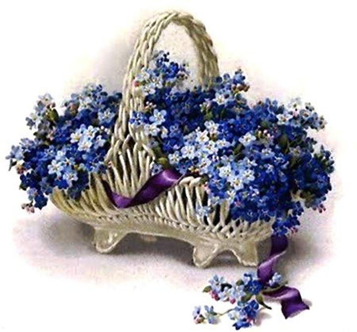 Vintage Forget-Me-Not Flower Basket - Sara Valor