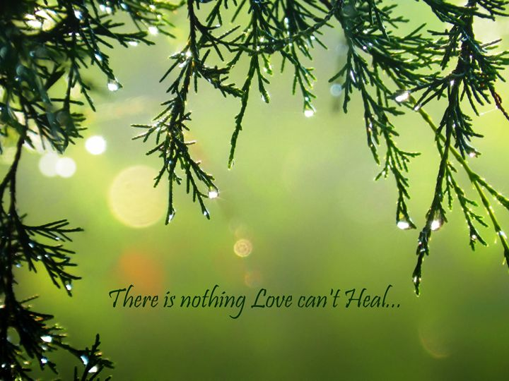 Healing Love Quote Raindrops - Sara Valor