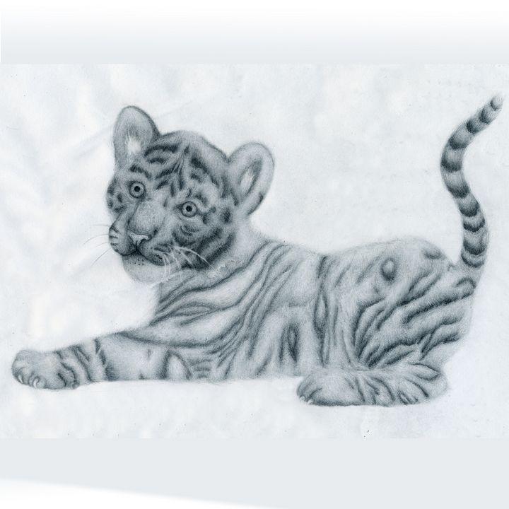 Tiger Cub - Animal Drawings by Tiana