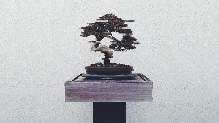 Digital Bonsai - Nuwave Fighters