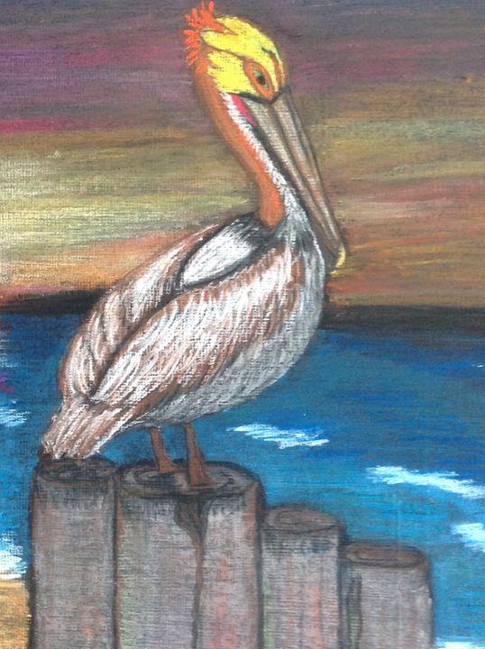 Pelican Joe - Time Traveler