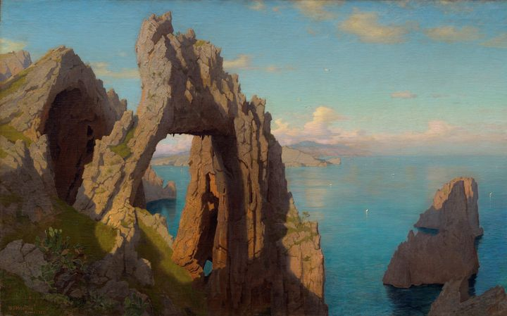 William Stanley Haseltine~Natural Ar - Canvas printing