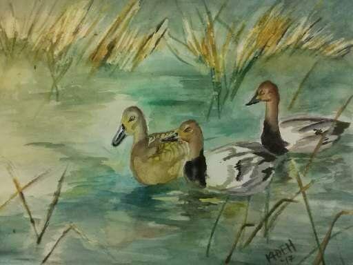 Ducks in a Row - Kristal Melody Art