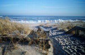 Footprints in the dunes