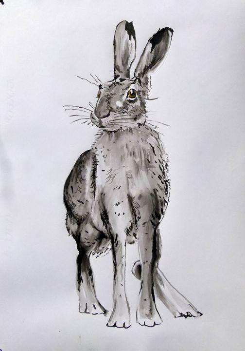 Rabbit - Soso kumsiashvili