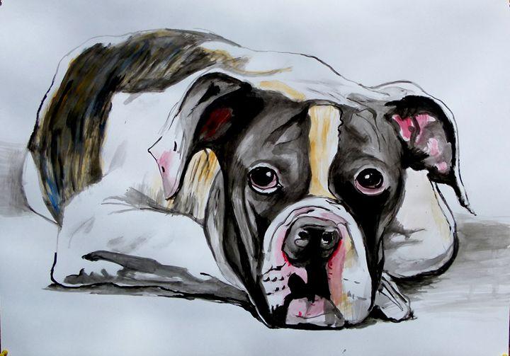 Bulldog - Soso kumsiashvili