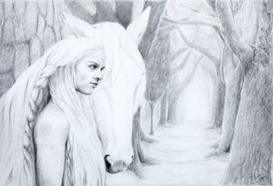 The woman, the horse, their path