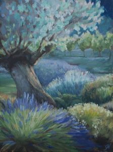 Olive Tree and Lavender