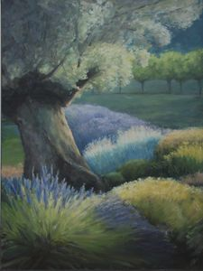 Olive Tree and Lavender II