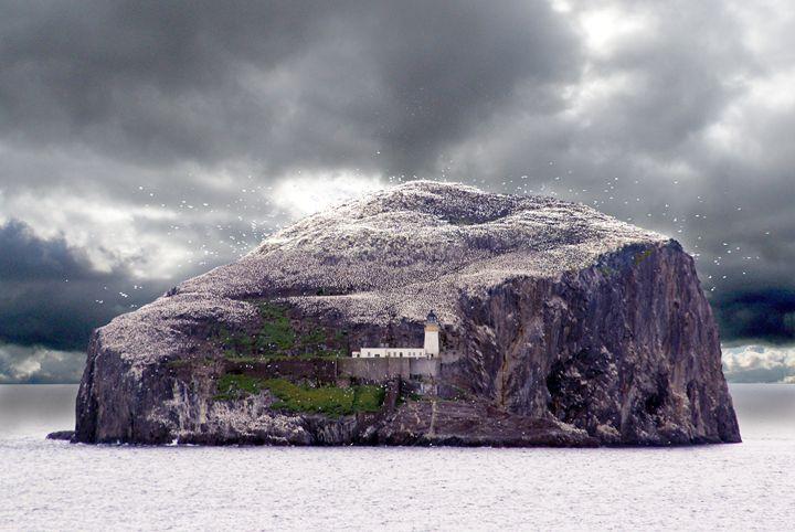 Bass Rock, Scotland - Rod Jones Photography