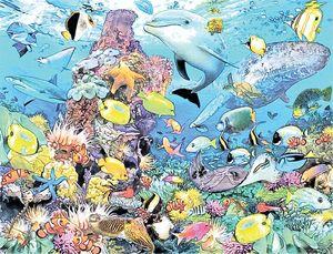 Beautiful Ocean Life fish Aquarium
