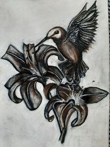 Bird taking nectar
