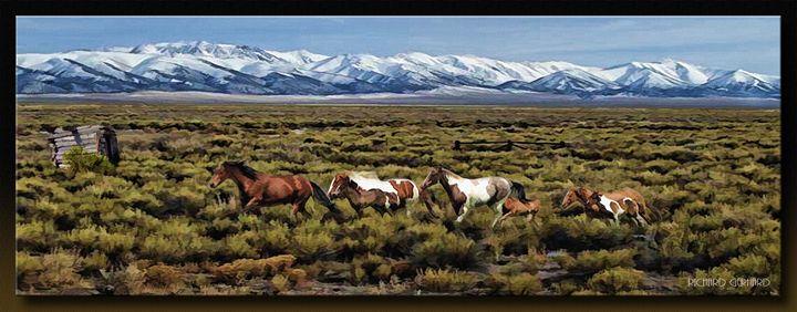 Home on the Range - Richard Gerhard