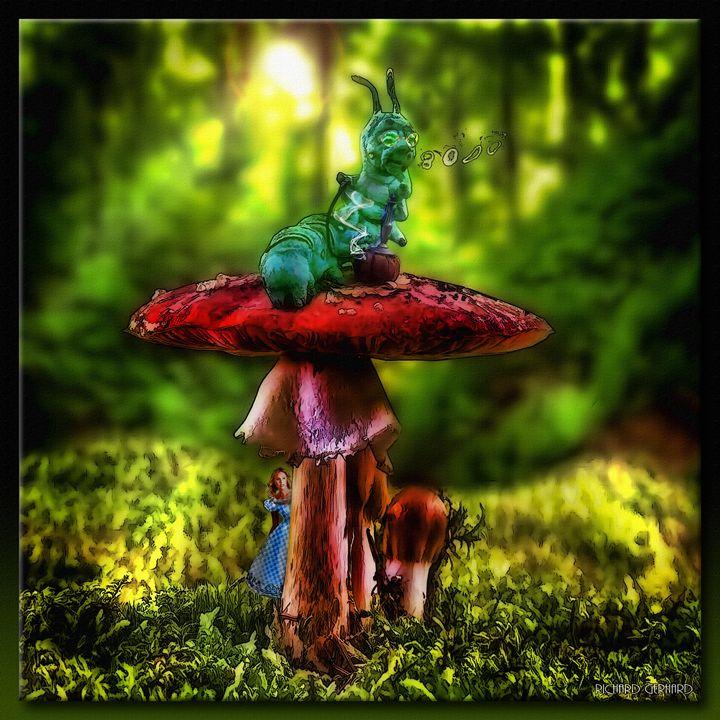 Wonderland - Richard Gerhard