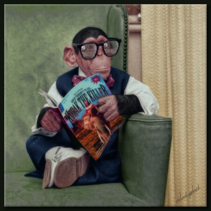 The Chimp - Richard Gerhard