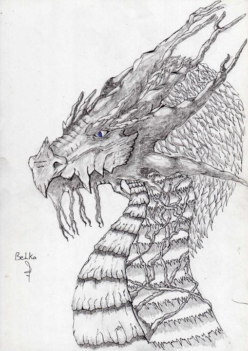 dragon 6 - belka