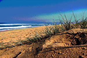 grassy sand