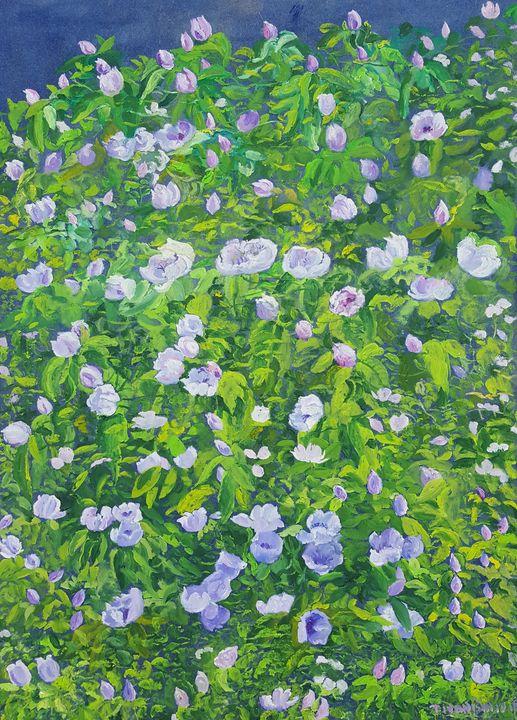 Quince Blossom II - Tomislav Ivanišin