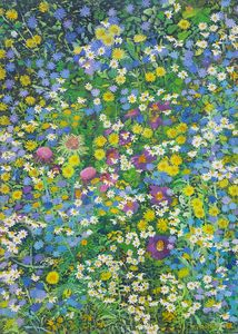 Wild flowers - Tomislav Ivanišin