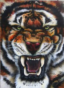 Power of the Tiger