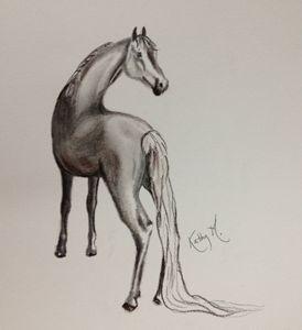 Horse serie 3