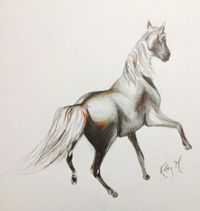 Horse serie 1