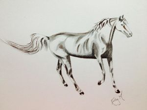 horse serie 2