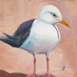 Sweet seagull