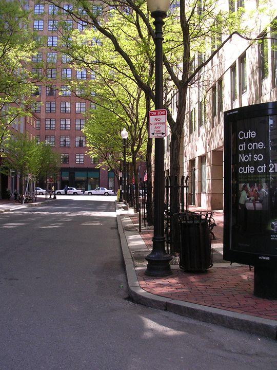 boston in the spring - Lilly Von Lane