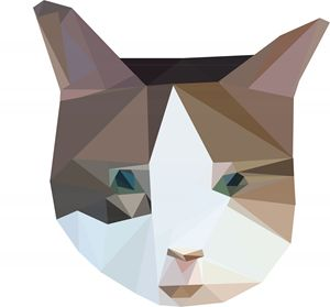 Polygon Cat