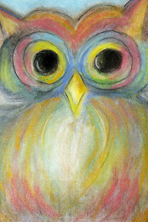 The Colorful Owl - Danielle Allard's Beachouse Art