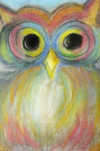 The Colorful Owl