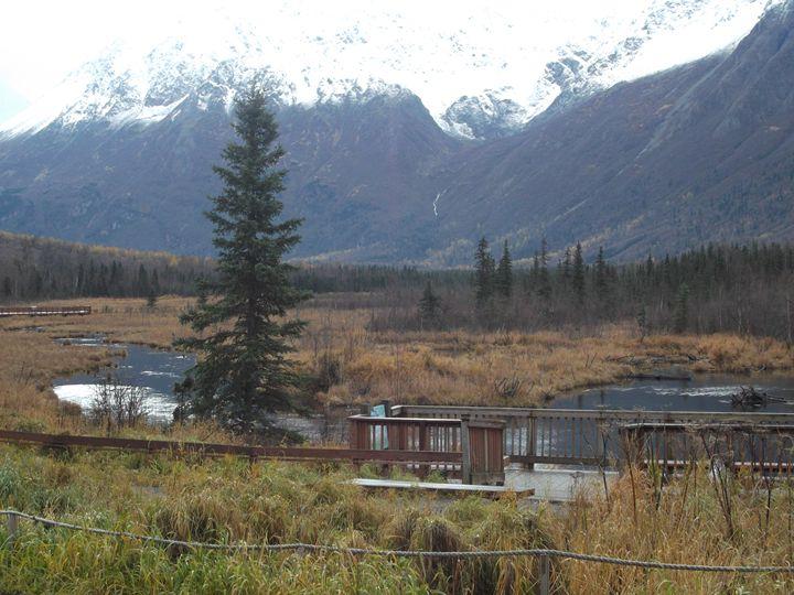 Alaskan View #1 - Emmanuel Drew