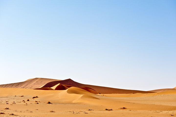 Desert Dunes - Porpoise Pics